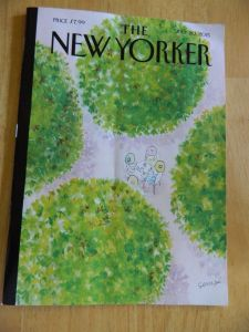 July 20 2015 New Yorker cover photo